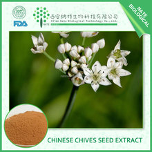 High Quality Chinese Chive Seed Extract Semen Allii Tuberosi Powder FREE sample