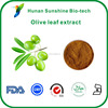/product-detail/hot-product-olive-leaf-extract-powder-10-60-oleuropein-60367006699.html