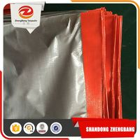 Cheap Price Big Production Ability Colored Plastic Clear Coated PE Sheets