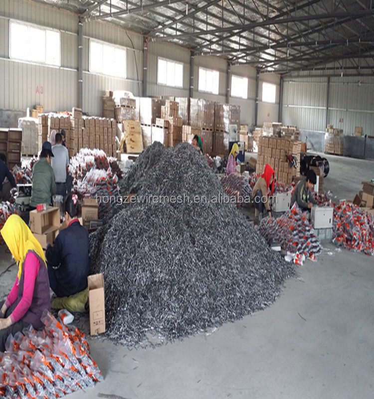 High quality best price common wire Nails factory(direct sell)