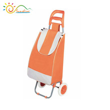 Hot sale new style 2 wheels vegetable luggage shopping trolley bag