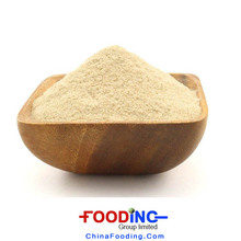 Organic Vital Wheat Gluten Powder Price