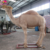 KANO-070 High Quality Realistic Animatronic Camel