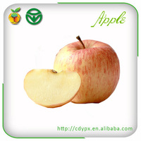 high quality wholesale prices apple fruit wholesale distributors