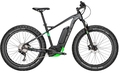 Fasion cheap price E bicycle fat tire snow bike