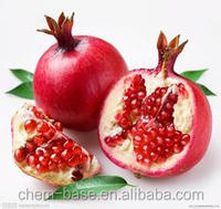 Pomegranate Extract Pomegranate P.E, Ellagic acid 40%-95%
