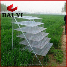 Top Sale Quail Cage/Layer Egg Chicken Cage/Broiler Poultry Farm House Design