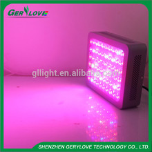 300W Led Grow Light Full Spectrum Led Plant Growth Lamp 380-840nm for Greenhouse Plant Flowering Grow Tent
