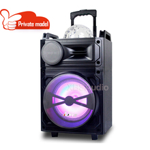 "10"" Portable Trolley Speaker LED Light with Wireless Microphone Remote Control FM radio SD USB Port"