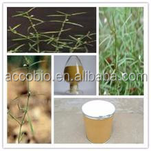 100% Natural High quality Spreading Hedyotis Herb Extract powder