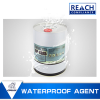 WP1323 Waterproof and anti - weathering concrete and cement crafts hydrophobic coating