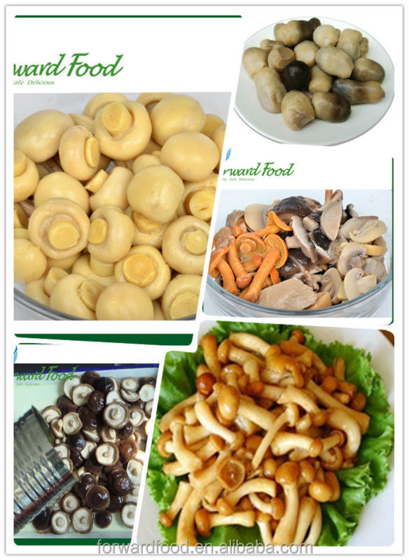 canned mushrooms whole, pieces and stems, slices and mixed mushrooms in tin