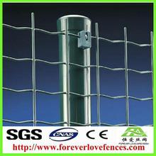 wire fence netting / holland wire mesh fence /construction grid mesh holland fence fences for kids