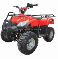 1000W 48V High Quality Amphibious Vehicles for Sale