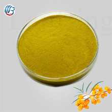 GMP standard bulk pure natural high quality sea buckthorn extract powder