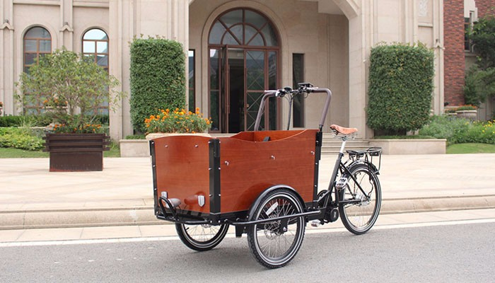 Cargo Bike For Kids With Aluminium Frame