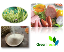 High Quality Iota Carrageenan food additive