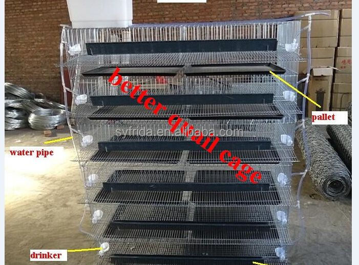 Multifunction full automatic rabbit cage,quail cage for sale in philippines frda laying cage