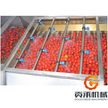 Processing tomato machine fruit paste processing machinery