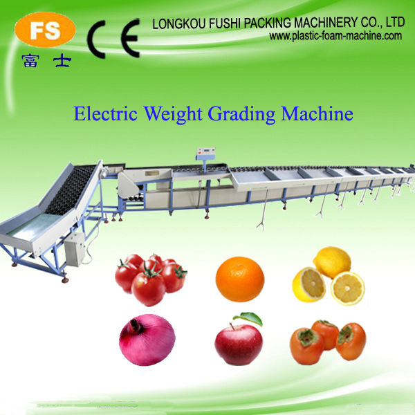 Automatic Loading Fruit and Single Lane Sorting Equipment