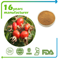 High quality Natural Pure Rose Hip Extract Powder 4:1 10:1 ,Vc 17% ,Rosehip polyphenols 5%~10%