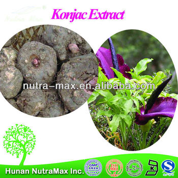 2014 Nutramax Supply Organic Amorphophallus Konjac Root Powder Glucomannan 90% 95%