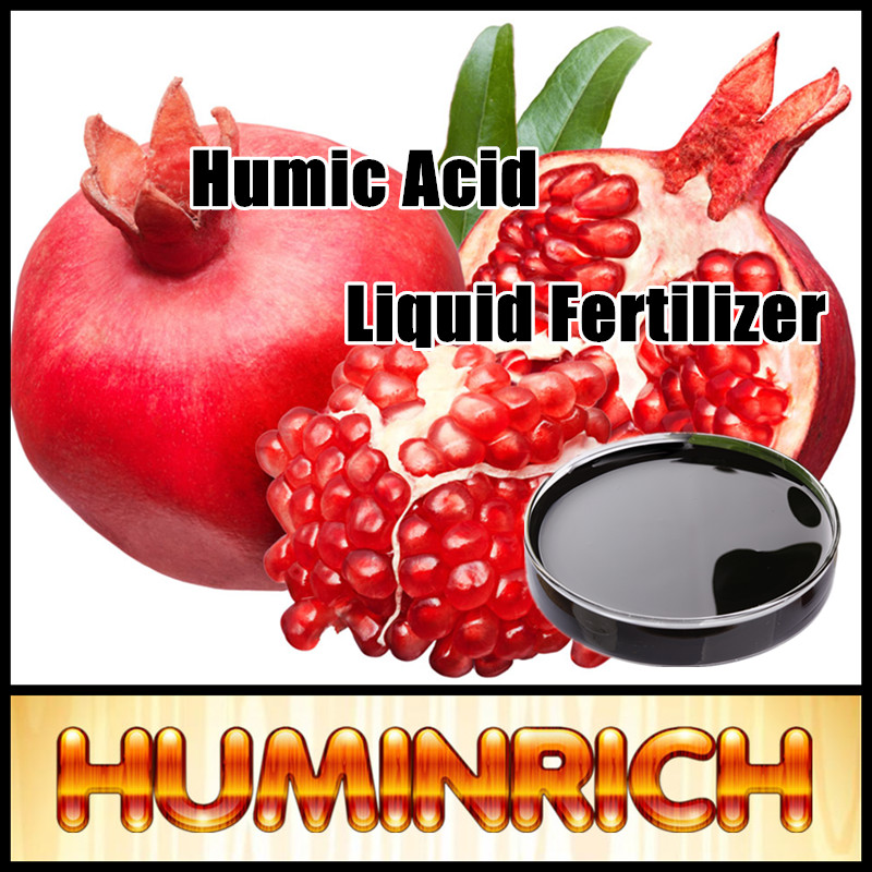 Huminrich Super Amino Acid Organic Humic Acid Liquid Fertilizer