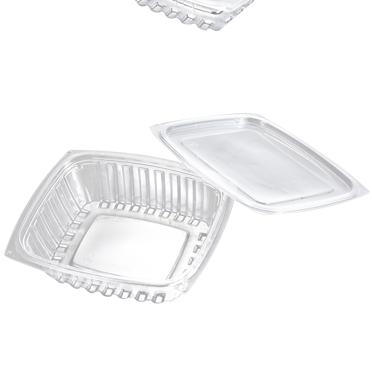 Easy Green Hot sale disposable transparent food plastic food container