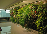 Indoor Decorative Tropical Plants Plastic Garden Walls from Manufacturing Company