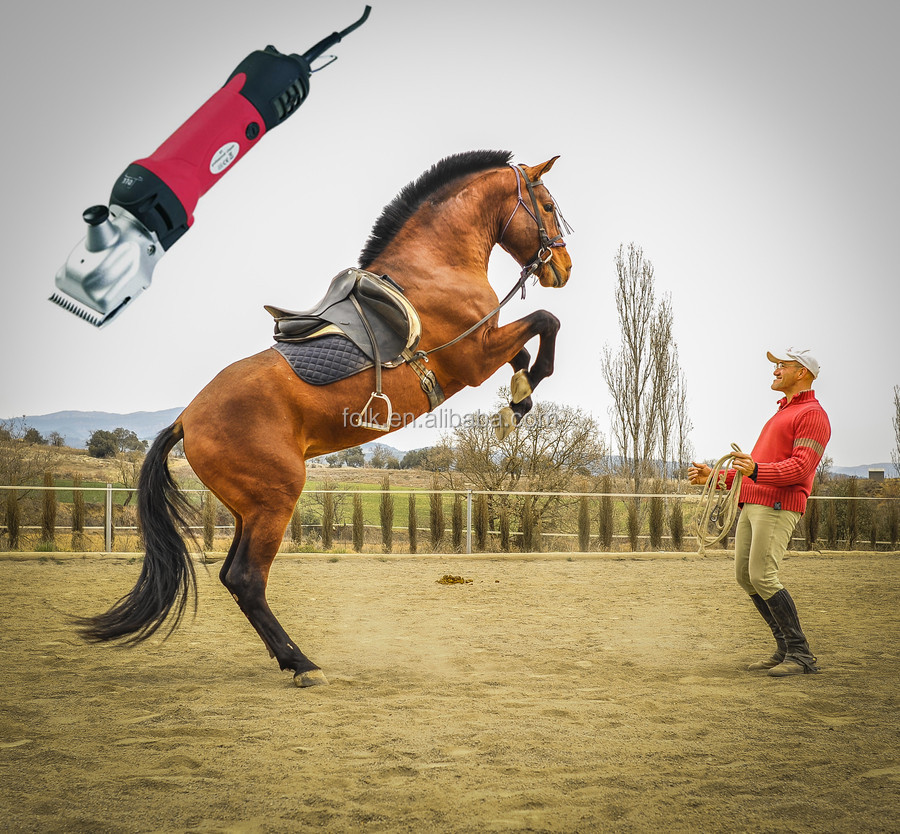 Best horse face clippers for men