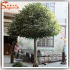 Home & garden artificial ficus tree indoor no leaves for decoration