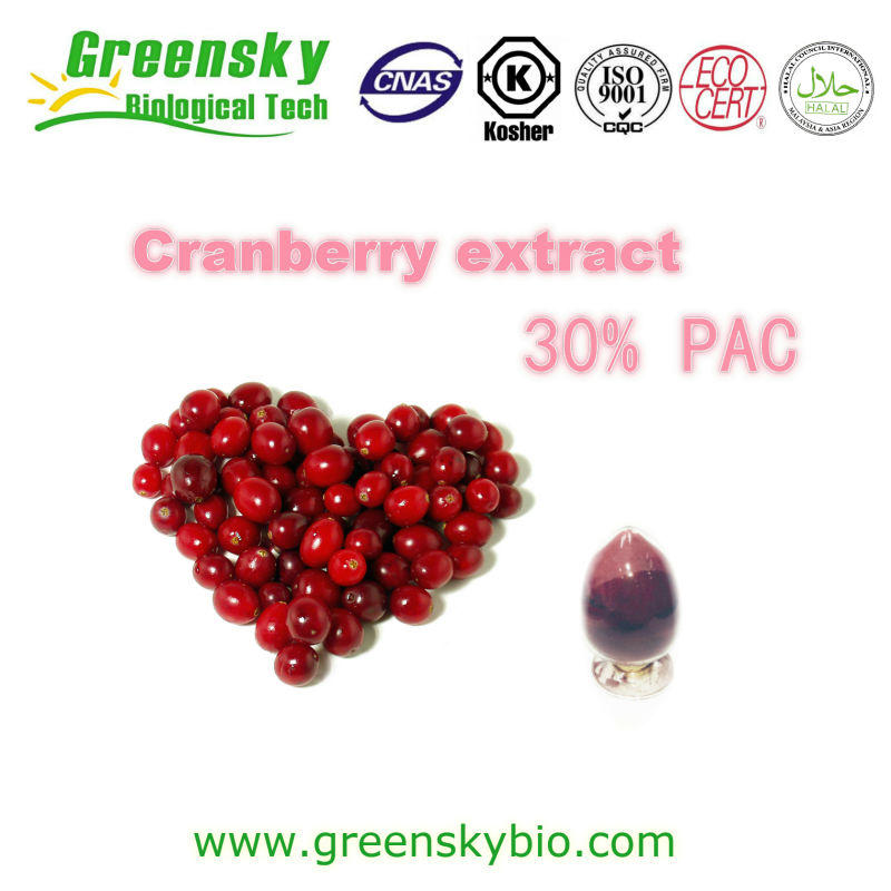 30% PAC Cranberry Extract