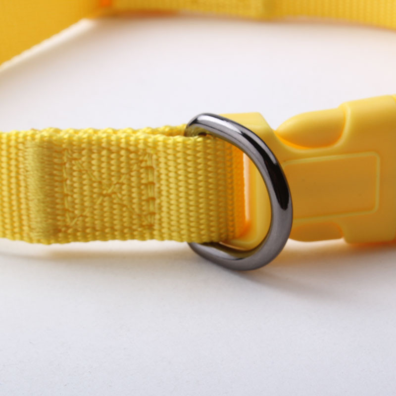 Colorful nylon breakaway small dog collar factory for pet