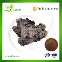 100% Natural Top Quality Chaga Mushroom Extract