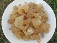 White color gum arabic/acacia/safe food