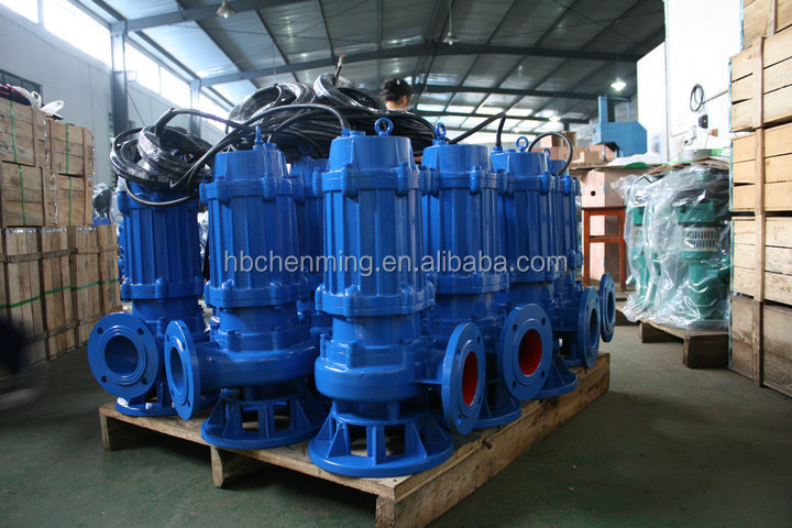 WQ Vertical Deep Suction Raw Water Park Pumps