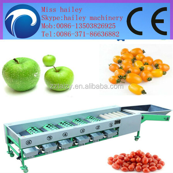 high-ranked and good-using apple peach washing and grading machine