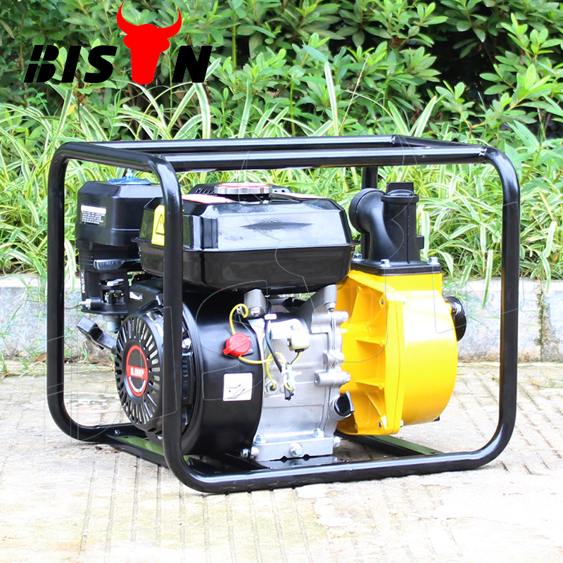 BISON(CHINA) BS20 2 Inch Agriculture Use Gasoline driven Water Pump Home Depot