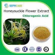 100% natural honeysuckle flowers extract chlorogenic acid for antioxidation