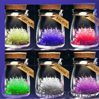 Charming DIY Growing Bright Crystal Bottle Lucky Charm Educational Toy