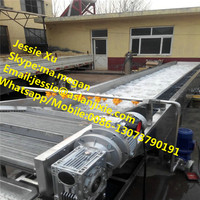 water spray high pressure cleaner/ Vegetable Washer/Cleaner Machine for all kinds of vegetable and fruits