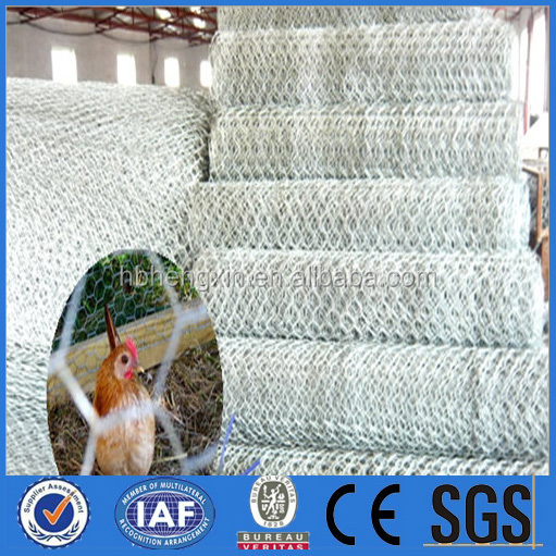 PVC Coated wire woven hexagonal mesh poultry netting chicken wire fencing