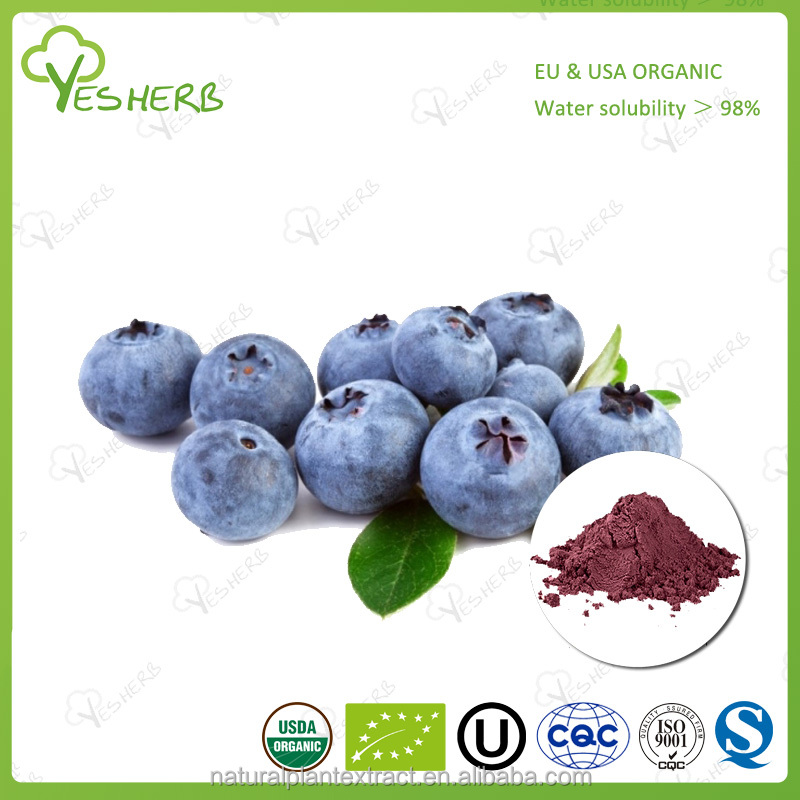 Factory supply blueberry powder bulk lyophilized blueberry powder