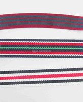 Colorful polyester ribbon and webbing in stripe pattern