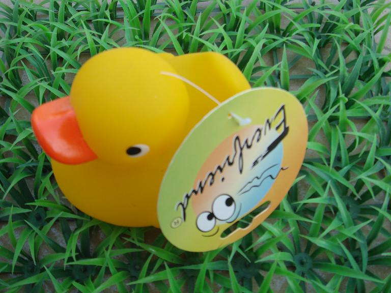 rubber duck/frog