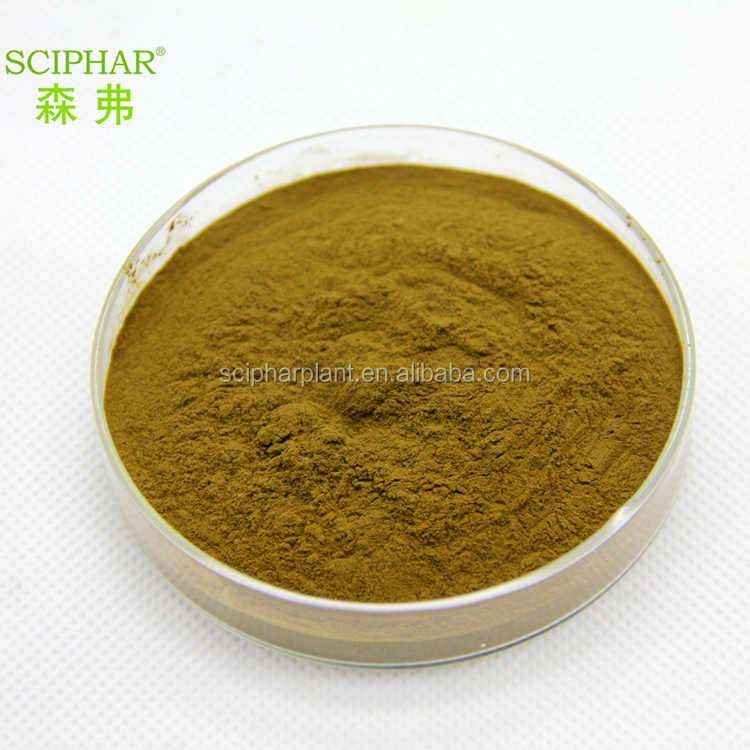 Professional factory High quality natural Sanchi Extract20:1