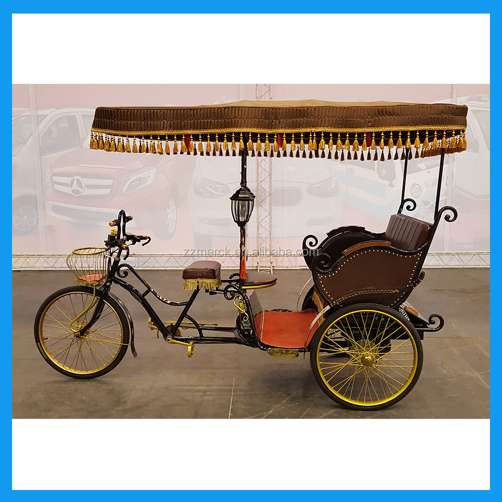 Pedal Assist Family and Cargo use Three Wheel Electric Wagon Pedicab Rickshaw