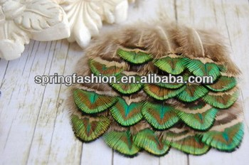Small Green & Gold Peacock feather