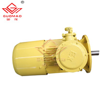asynchronous motor Three phase induction electric motor Squirrel cage motor