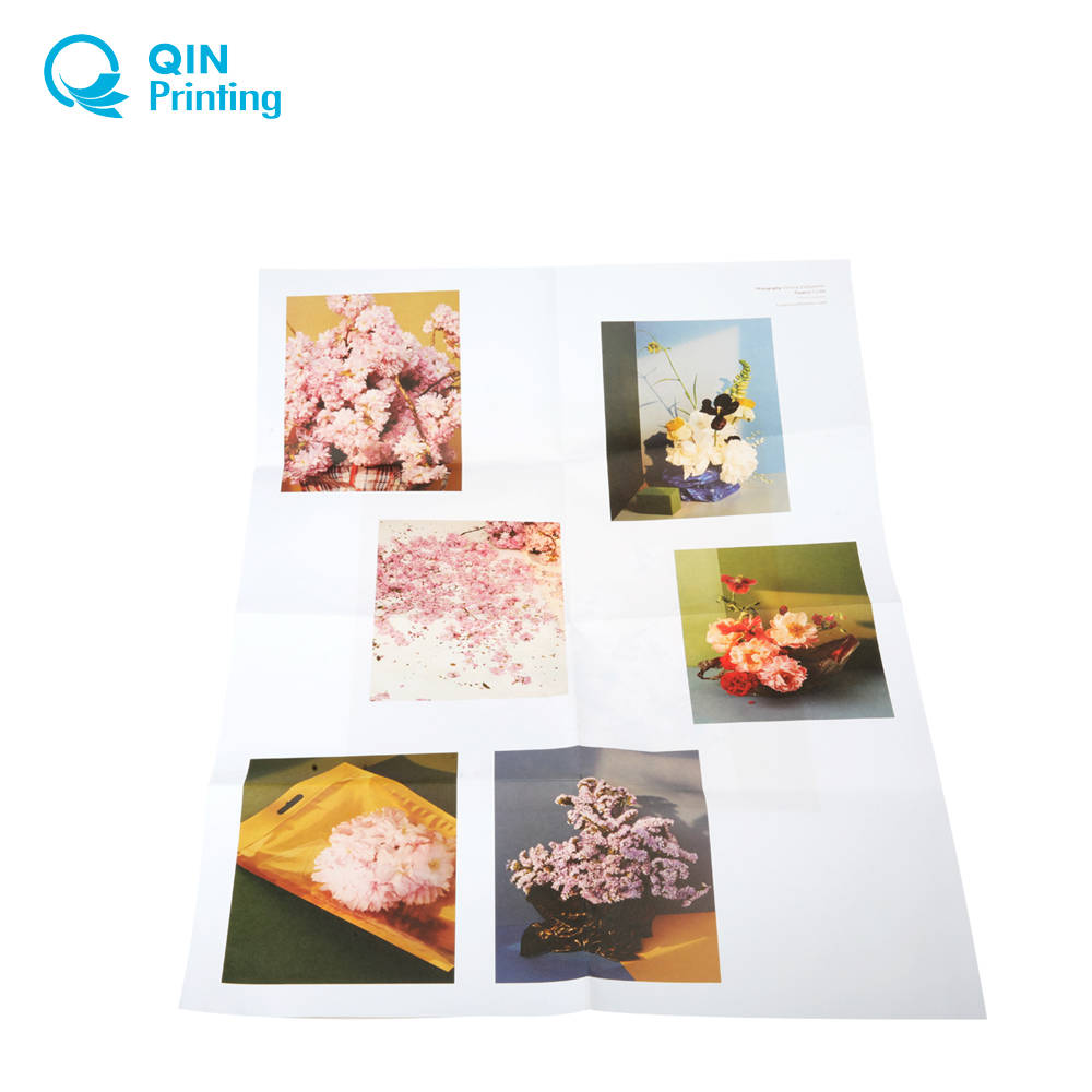 Professional customized full color A1 poster printing service